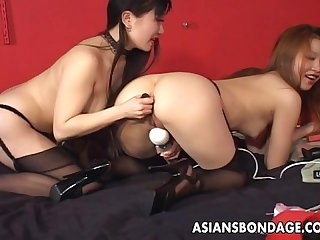 Asian sluts are toy fucking the wet clit and cumming together