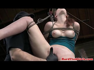 Hogtied and hair Bounded sub fingered