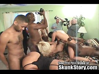Black cock dominates milf white bitches