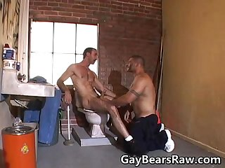 Hardcore cock sucking bear couple