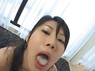 Atsumi swallow