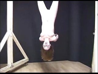 alex - inversion bondage blowjob