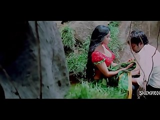 Hot Romantic Saree Removal in Jungle - Bhauja.com