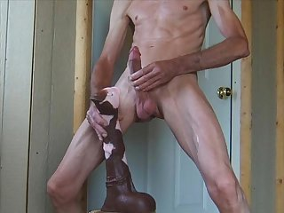Flaring stallion penis and huge horse cock ass fuck