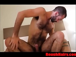 Hairy otter bareback fucked by daddy